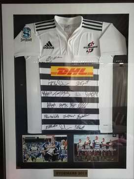 Signed by whole team stormers 2013 rugby jersey