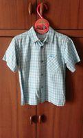 Koszula dla przystojniaka Tup tup, rozmiar 104.