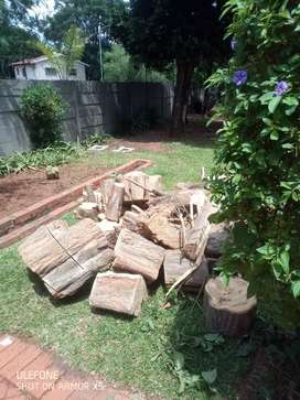 Rubble removal and tree felling and also stump removal