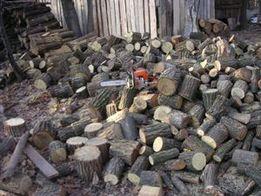 Валка деревьев разпиловка дров