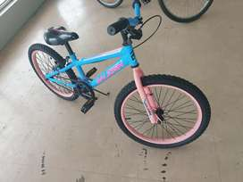 """20"""" inch Raleigh pink and blue"""