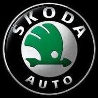 Ремонт всех двигателей на Шкода (Skoda)