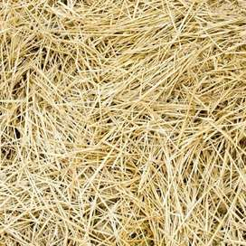 Oats/Hawer bales for sale!!