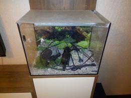 Продам аквариум 60 лтр.