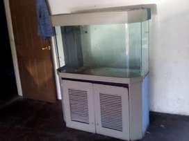 Fish tank large curved glass with bio fillter