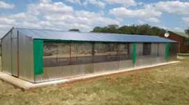Chicken poultry  house