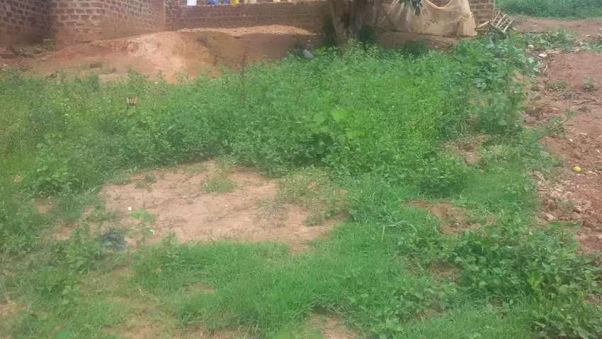 A plot on sale located at nakabugo bulenga plot size 25 / 40 0