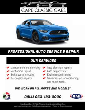 Professional Auto Service and Repair