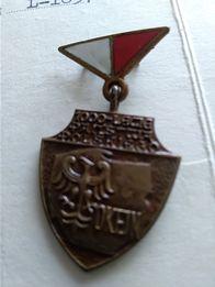 Odznaka 1000 lecia.