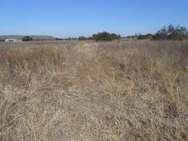 Land for sale in Roodeplaat