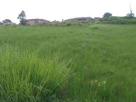 Site for sale