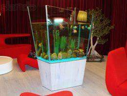 обслуживание аквариумов .ремонт аквариумов.изготовление под заказ