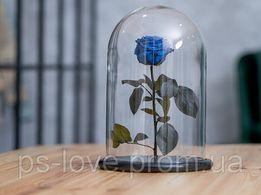 Роза в колбе Синий Сапфир Доставка по всей Украине