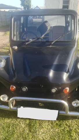 Beatch buggy