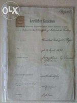 Raport medyczny / Dokument sądowy / 1912/19R. / Unikat