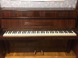 Майбутнім віртуозам: Піаніно Petrof
