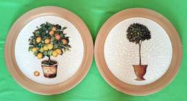 Two Stunning Plates