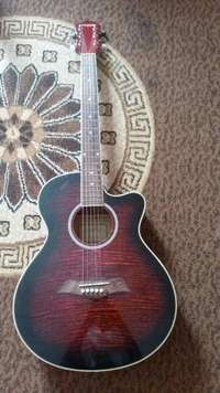 Image of acoustic guitar with bag