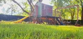 Playhouses and Wendys