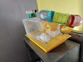 Rodent, hamster, mouse cage