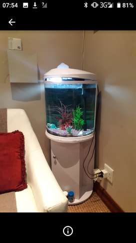 Fish tank maintance and cleaning