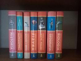 Słowniki encyklopedyczne