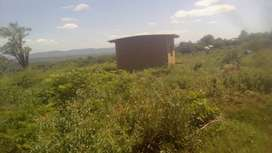 Stand for sale in Tshififi Sibasa