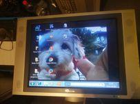 Monitor do Amigi z głośnikami po bokach 20 cali 4Dvision