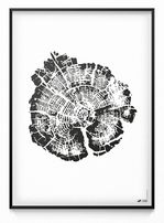 Plakat obraz 40x35 pień drzewa drzewo czarno biały