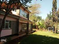 House for rent in Runda 0