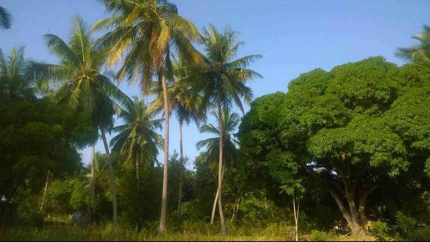 LAND FOR SALE AT DIANI COAST,UKUNDA SCHEME 0