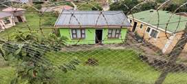 4 Room House to Rent in Illovu