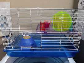 Big hamster cage with 2 teddy bear hamsters