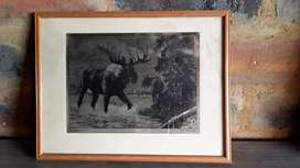 Framed picture for sale/swop
