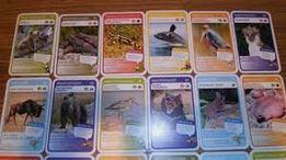 WSZYSTKIE numery NOWE Karty z Biedronki SUPER Zwierzaki