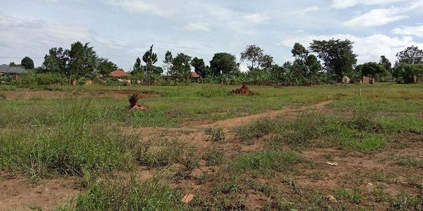Nice 50 by 100ft plot for sale in Namugongo at 42m 0