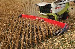 Уборка урожая кукурузы, зерновых комбайнами, обработка земли Николаев