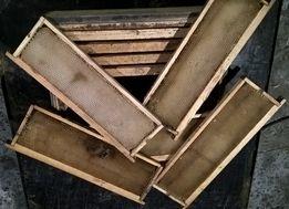 Сушь пчелиная (рамки сотовые) 145мм