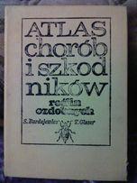 Atlas chorób i szkodników roślin ozdobnych - Burdajewicz