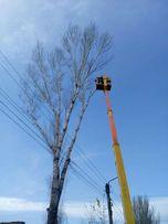 Спилить дерево с автовышки, альпинисты Одесса