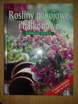 """Książka """"Rośliny pokojowe i balkonowe"""""""