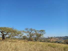 1,5 hectare stand on Wild Fig Wildlife & Eco Estate, White River - Mpu