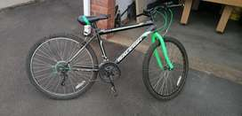 Raleigh 21 speed bicycle