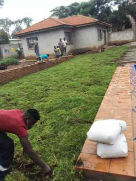 Paving and instant lawns