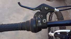 RALEIGH  ACCENT 29