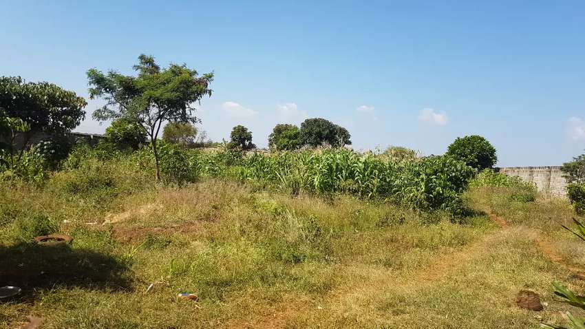 Land 0.5 acre for sale in Runda 0