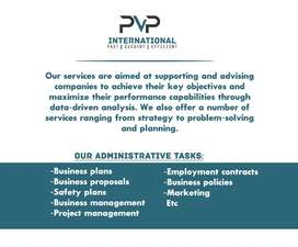 PVP International Business Consultants
