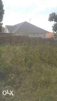 50by100 polt for sale in kitende, Entebbe 0