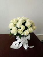 Галицькі Троянди,квіти Львів