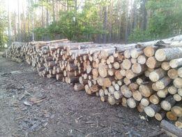 продам дрова сосна. Дуб с доставкой